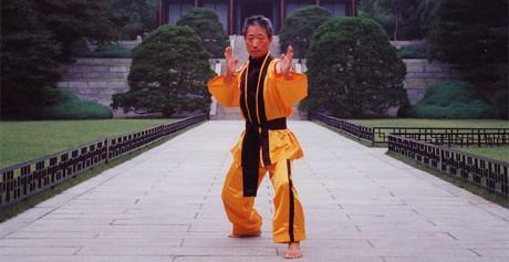 Eternal Grand Master Haeng Ung Lee